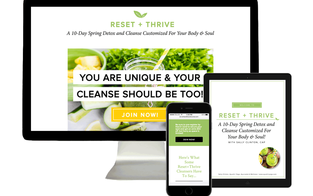 RESET + THRIVE PROGRAM: BRANDING + LAUNCH